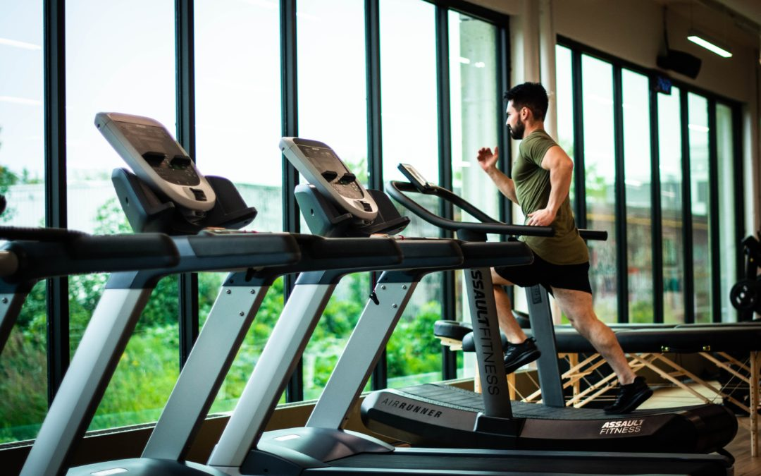 How to Master Treadmill Training: The Great Indoors